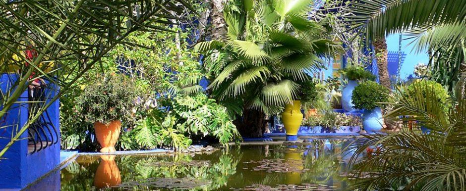 Stedentrip Marrakech. Oase van rust in Marrakech: Jardin Majorelle   Mooistestedentrips.nl