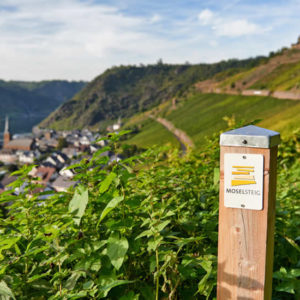 Trier en omgeving: de mooiste dagtrips vanuit Trier | Mooistestedentrips.nl