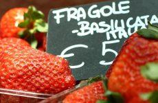 Culinair genieten in Turijn: eten en drinken in Turijn | Mooistestedentrips.nl