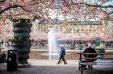 Bezienswaardigheden Stockholm, doen in Stockholm (foto met dank aan Lola Akinmade) | Mooistestedentrips.nl