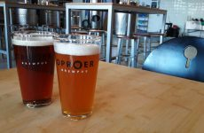 Bier in Utrecht: de ultieme craftbeer guide | Mooistestedentrips.nl