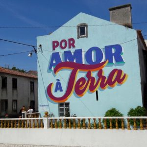 Street art in 5 undiscovered cities of Portugal   Mooistestedentrips.nl