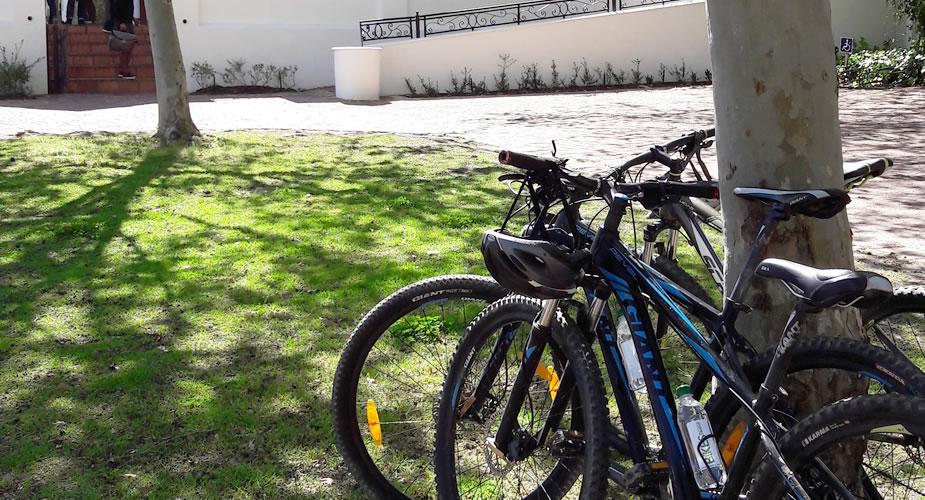 ntdek de wijnvelden van Stellenbosch op de fiets | Mooistestedentrips.nl