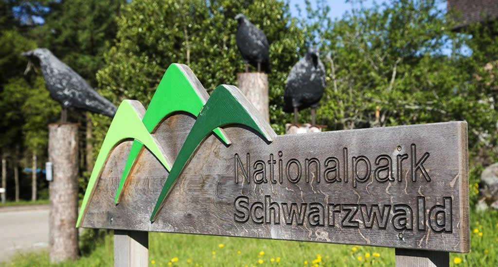 Nationalpark Schwarzwald | Tips voor een vakantie Zwarte Woud