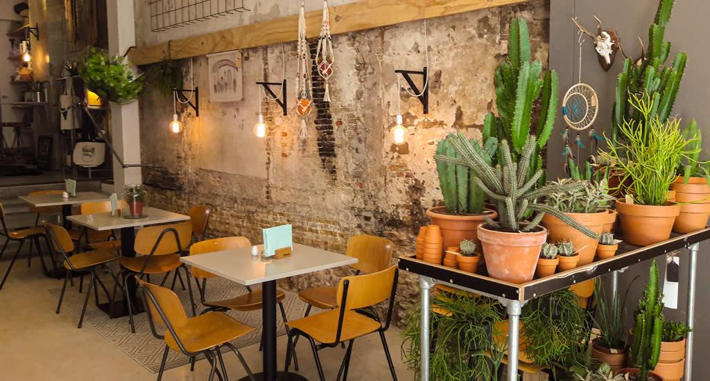Restaurants Delft | Pleck, Delft