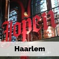 Stedentrip Nederland: Haarlem. Mini-break in Nederland: Haarlem | Mooistestedentrips.nl