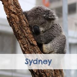 Stedentrip Sydney | Mooistestedentrips.nl
