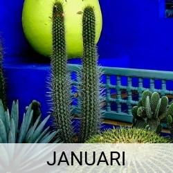 Stedentrip Januari | Mooistestedentrips.nl