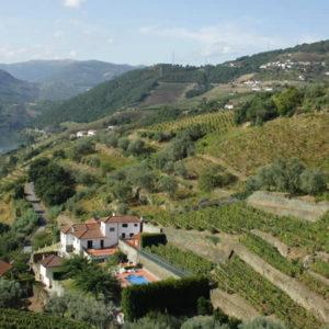 Douro Vallei, Portugal: dagtrip vanuit Porto | Mooistestedentrips.nl