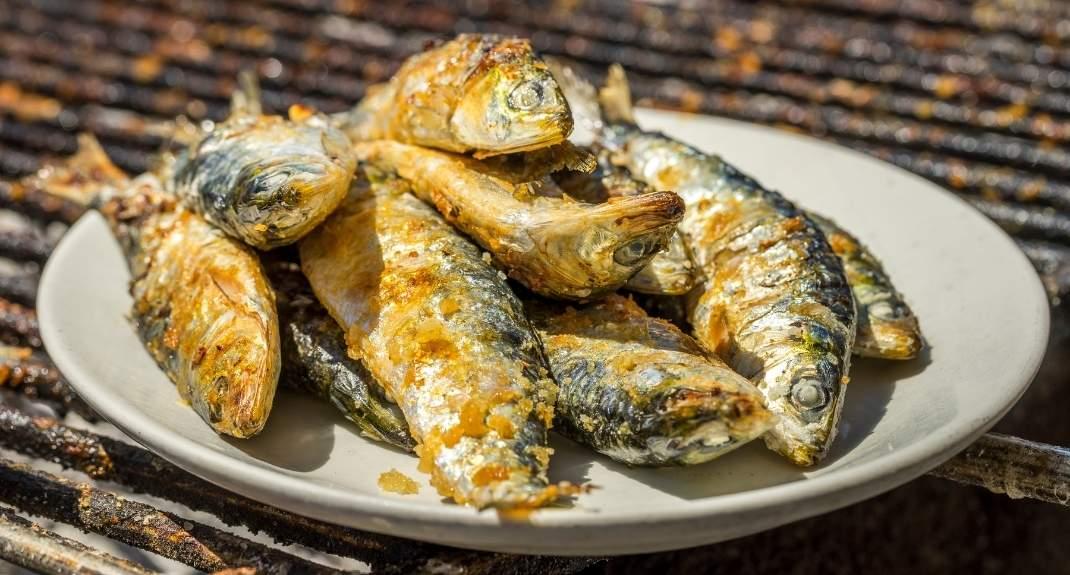 Restaurants in Faro: bekijk de leukste tips   Mooistestedentrips.nl