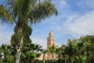 Doen in Marrakech: de mooiste bezienswaardigheden Marrakech | Mooistestedentrips.nl