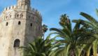Stedentrip Sevilla | Tips Sevilla: Torre de Oro