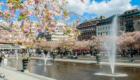 Stedentrip Stockholm | De leukste tips voor een stedentrip Stockholm