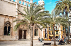 Bezienswaardigheden Palma de Mallorca | De leukste dingen om te doen in Palma de Mallorca