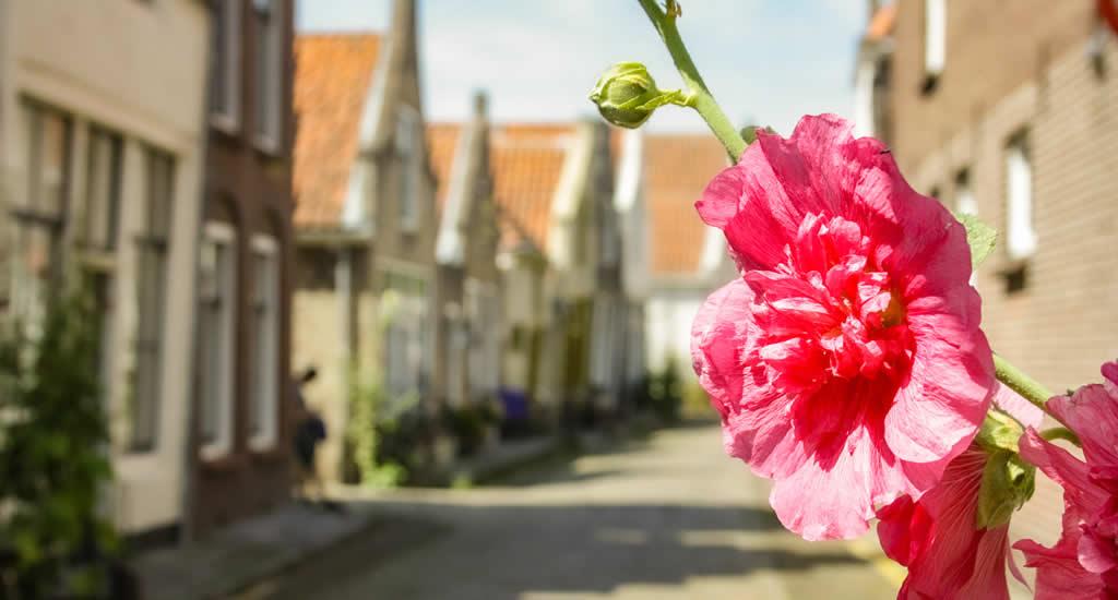 Wat te doen in Zierikzee? Bekijk alle tips over Zierikzee | Mooistestedentrips.nl