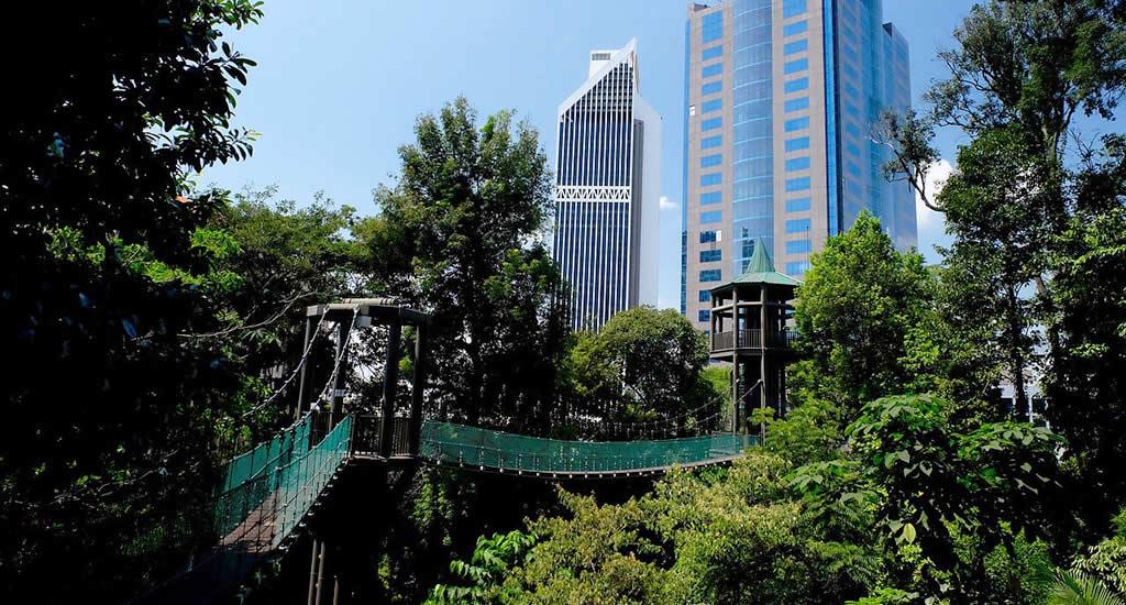 Bezienswaardigheden Kuala Lumpur, KL Forest Eco Park | Mooistestedentrips.nl
