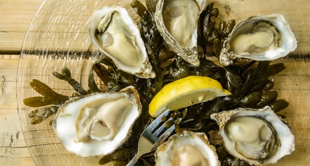 Oesters eten in Yerseke, Zeeland: De Oesterij | Mooistestedentrips.nl