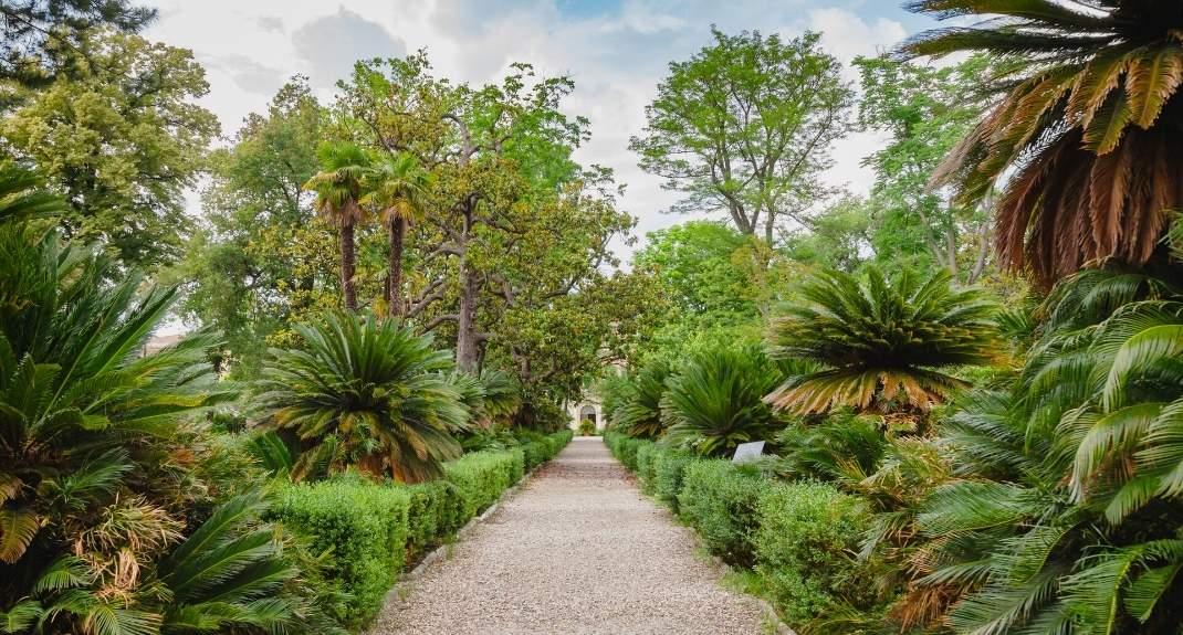 Orto Bonatico, de botanische tuin van Pisa | Mooistestedentrips.nl